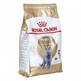 FBN British Shorthair 4 kg